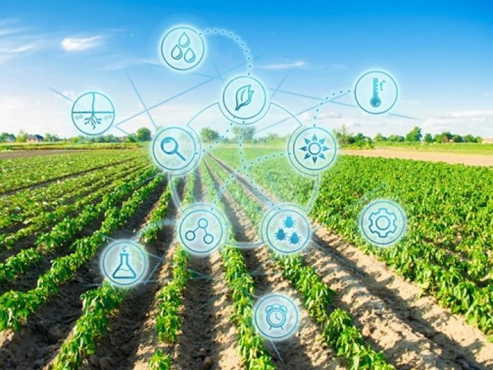 Quais são as tendências globais para o setor Agro até 2050